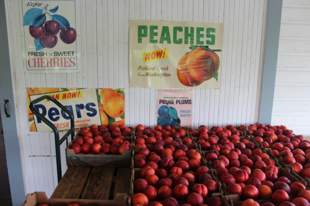 2015-7-25 Fruit Stands (5)