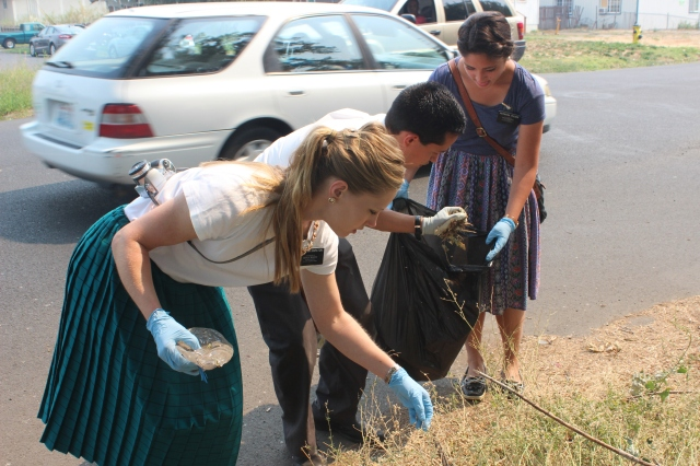 2015-8-22 District Service Project (15)