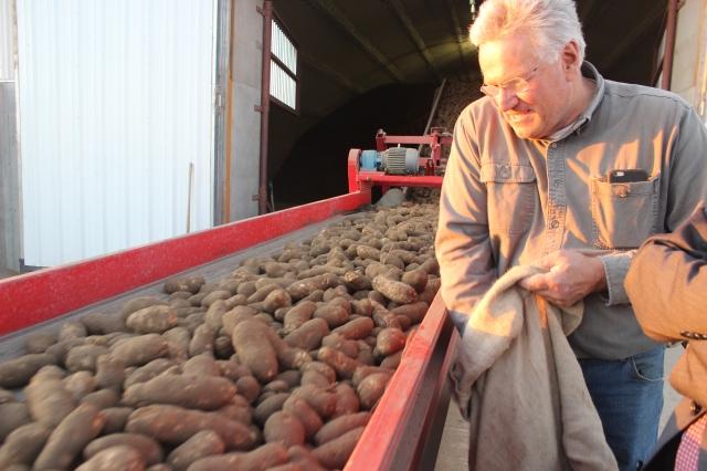 2015-9-22 Baker Potato harvest (35)