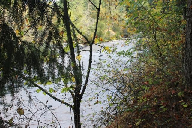 2015-10-11 Hood River (13)