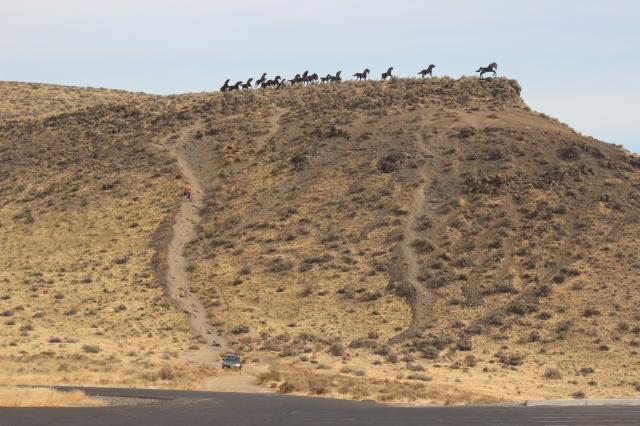 2015-10-6 Wild Horse Canyon (3)