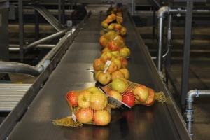 2015-10-7 Apples (19)