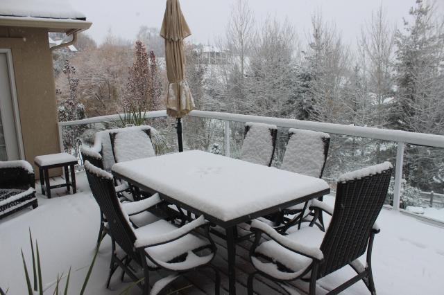 2015-11-24 SNOW (1)