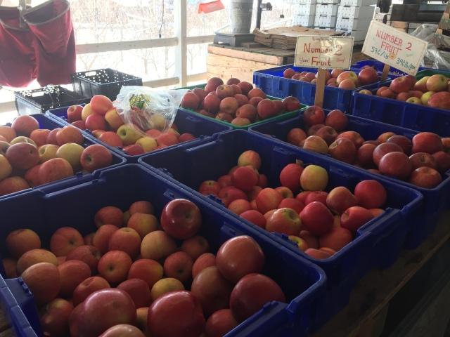 2015-12-19 Johnson's Fruitstand (7)