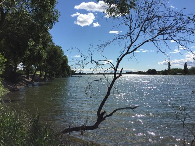 2016-6-11 Moses Lake (7)