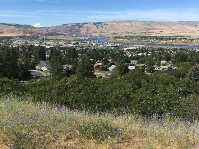 2016-6-4 The Dalles (48)