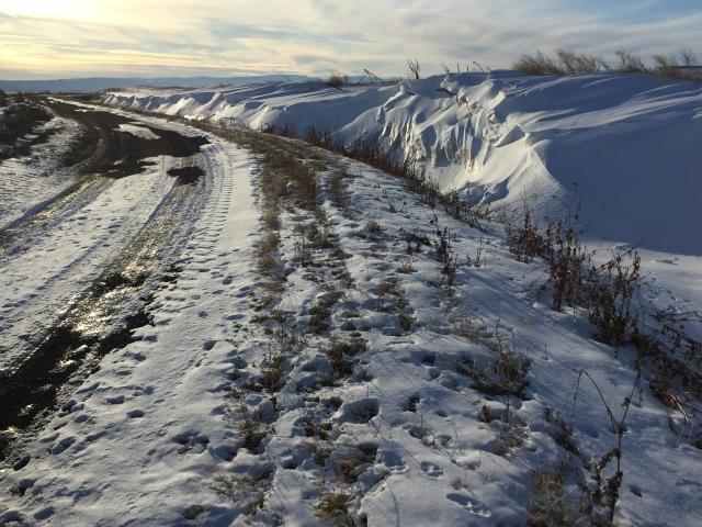2017-2-2-royal-in-snow-28