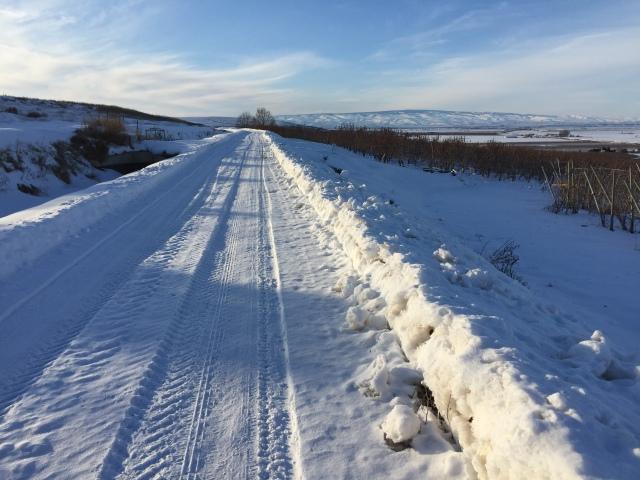 2017-2-2-royal-in-snow-40
