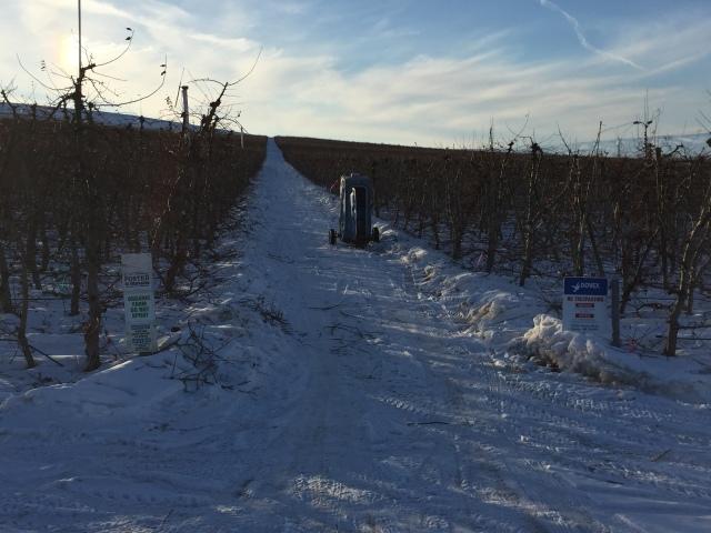 2017-2-2-royal-in-snow-49