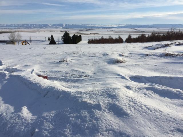 2017-2-2-royal-in-snow-5