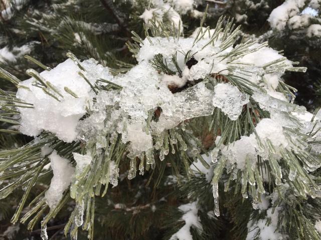 2017-2-9-icy-rain-11