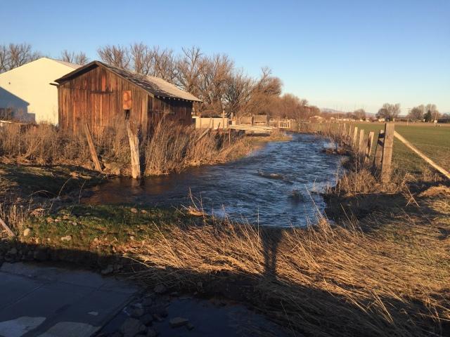 2017-3-11 zYakima flooding (13)