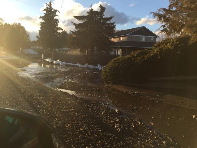 2017-3-11 zYakima flooding (2)