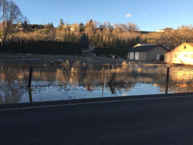 2017-3-11 zYakima flooding (8)