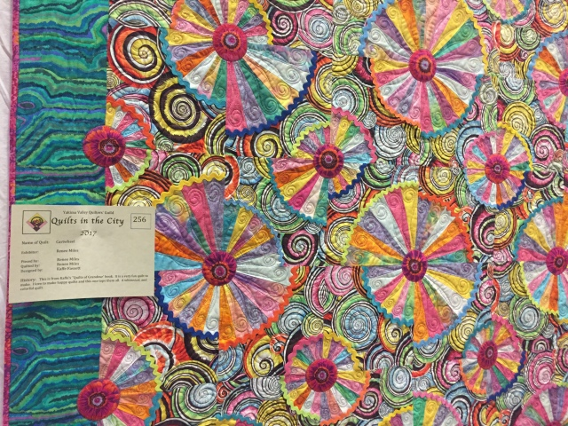 2017-5-19 DfG and Quilt Show (16)