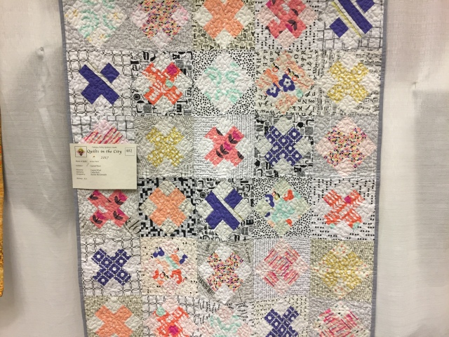 2017-5-19 DfG and Quilt Show (28)