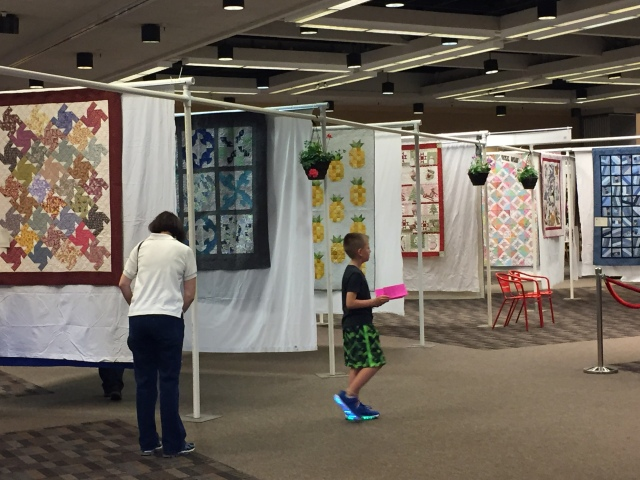 2017-5-19 DfG and Quilt Show (9)