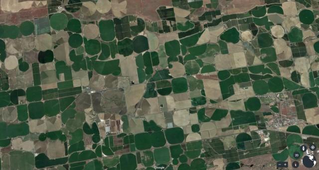 Royal crop circles