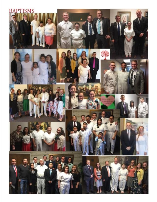 2017-6-26 Newsletter 11