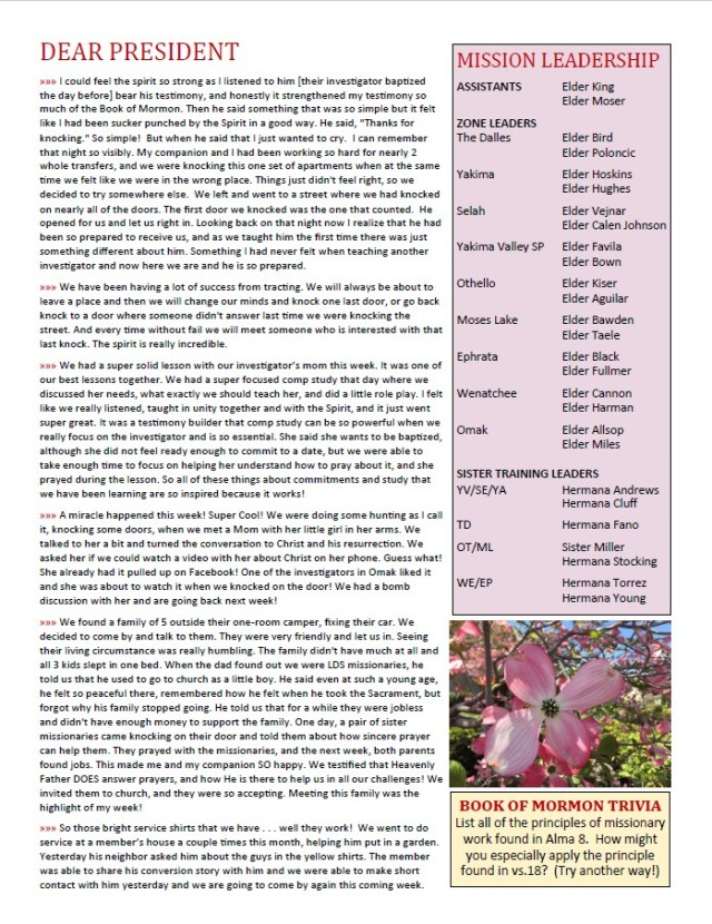 2017-6-26 Newsletter 2