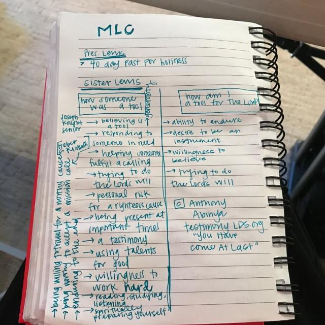 2017-10-31 MLC (51)