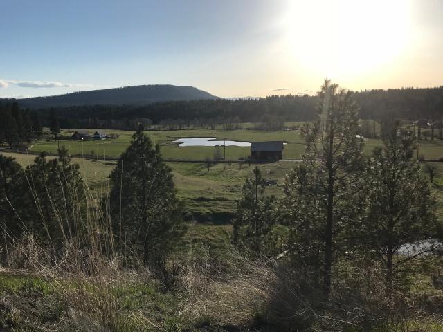 2018-4-22 z Roadtrip in the Springtime (26)