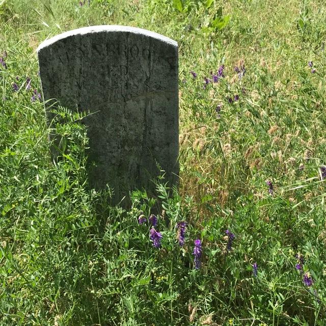 2018-5-20 Dalles z Pioneer Cemetery (11)
