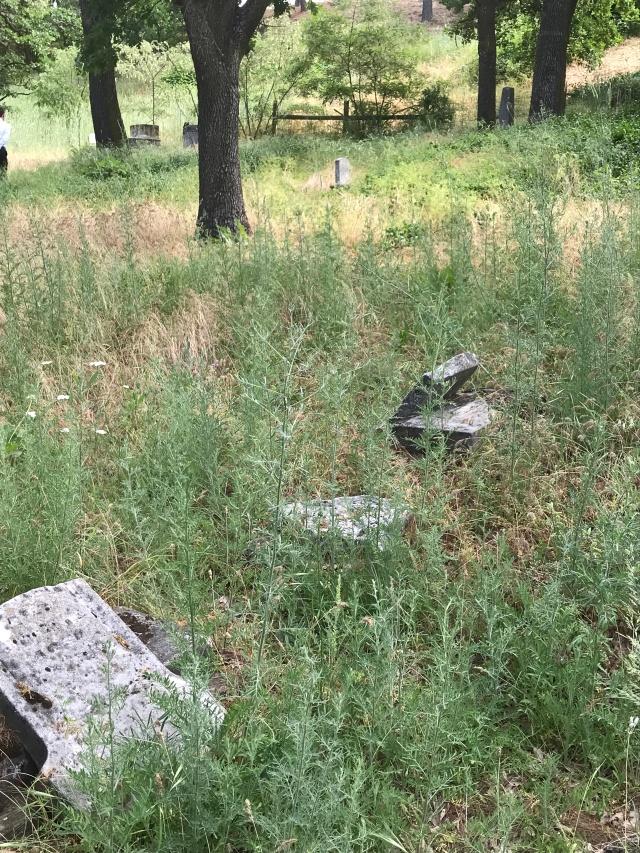 2018-5-20 Dalles z Pioneer Cemetery (31)