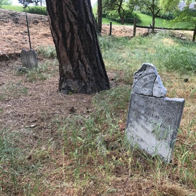 2018-5-20 Dalles z Pioneer Cemetery (36)