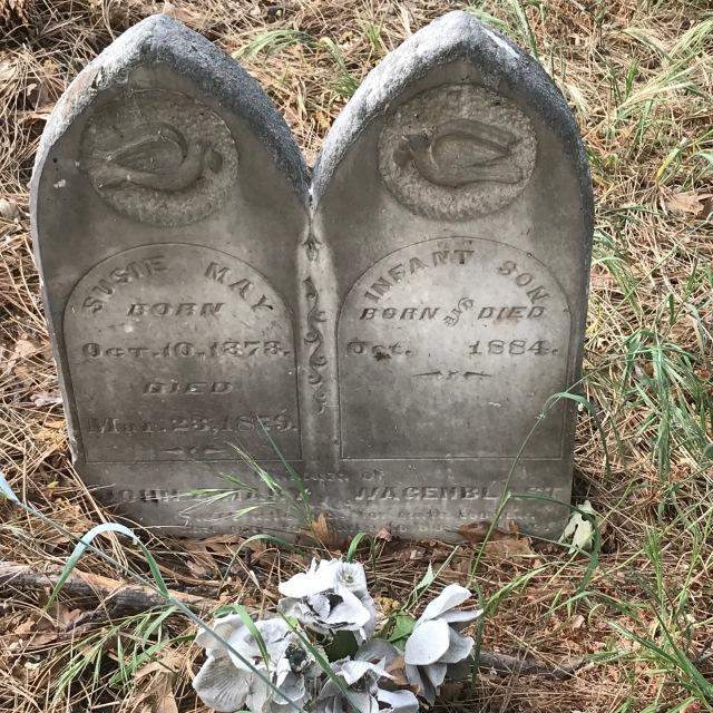 2018-5-20 Dalles z Pioneer Cemetery (37)
