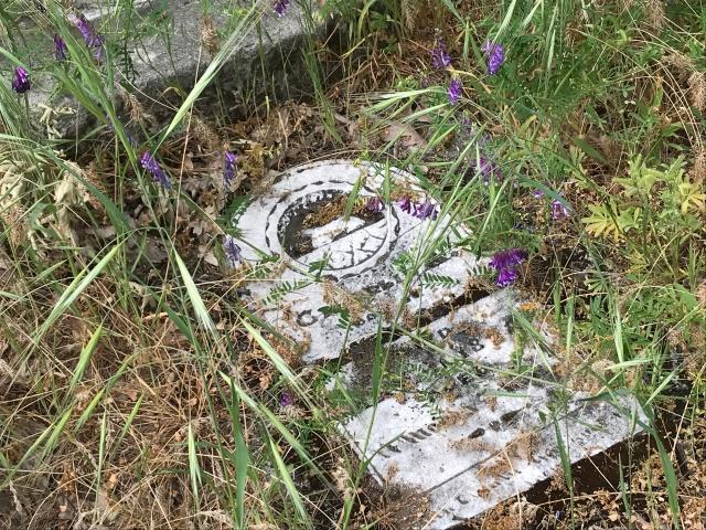 2018-5-20 Dalles z Pioneer Cemetery (41)