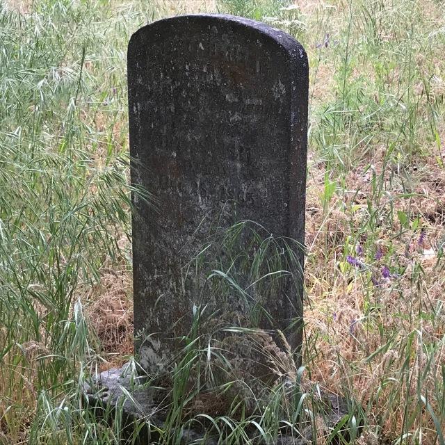 2018-5-20 Dalles z Pioneer Cemetery (44)