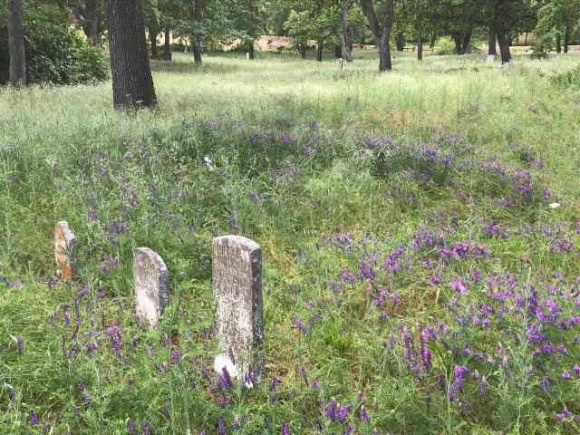 2018-5-20 Dalles z Pioneer Cemetery (53)